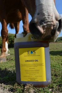 Linseed 6 1 200x300 - Why should linseed oil be a part of daily feed?