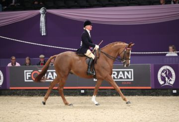 Lizzie Harris 360x245 - The going is good for Gateshead in the SEIB Racehorse to Riding Horse of the Year Championship