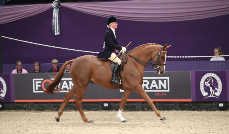 Lizzie Harris 750x440 - The going is good for Gateshead in the SEIB Racehorse to Riding Horse of the Year Championship