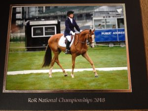 Magical Lasso IMG 1358 300x225 - Finalists Decided for RoR Heart Awards