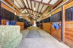 Stables 150x100 - How horses adapt to winter conditions