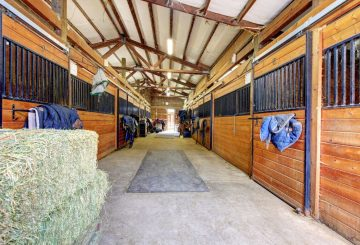Stables 360x245 - How horses adapt to winter conditions