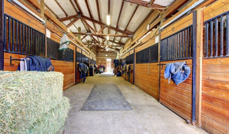 Stables 750x440 - How horses adapt to winter conditions