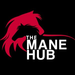 The Mane Hub 300x300 - Could you be our brand ambassador?