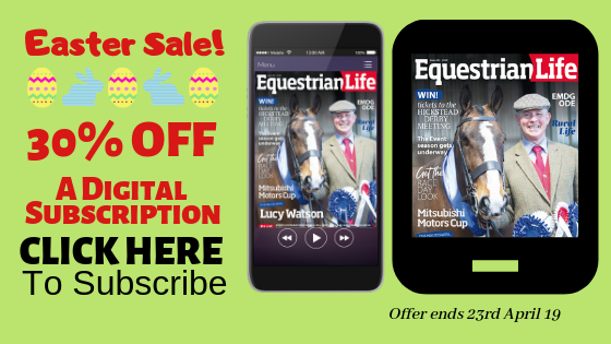 Easter Sale Digital Sub - Subscriptions