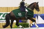 Nikki Crisp and Durable 150x100 - Horse & Country TV Showcase NAF Five Star Winter Dressage Championships