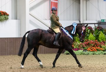 SEIB RDA Champ 6Aug18 033 360x245 - SEIB Search for a Star Riding for the Disabled series set for another great year