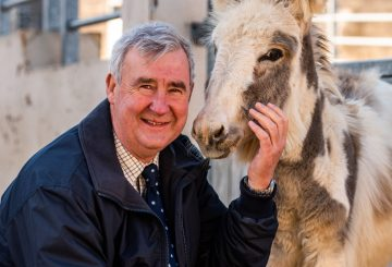 Yorkshire Vet Peter Wright The Donkey Sanctuary ambassaor 360x245 - The Donkey Sanctuary announces 'Yorkshire Vet' Peter Wright as ambassador
