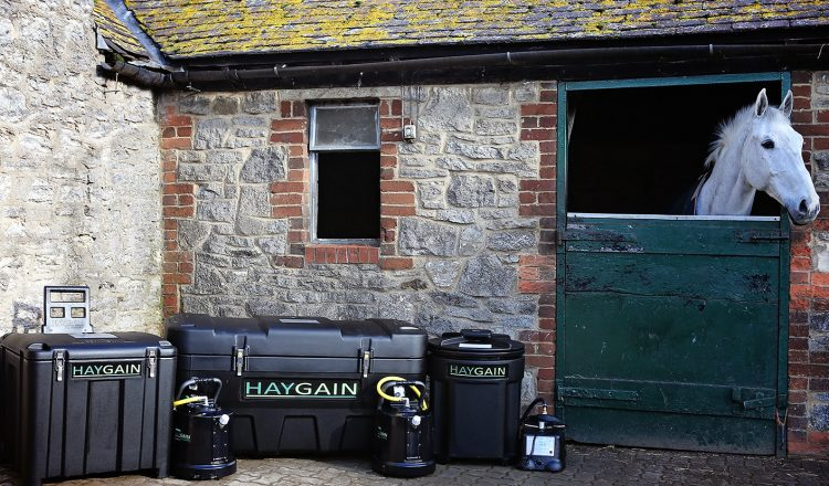 Haygain range lifestyle 750x440 - Horse Health in the Heat