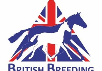 british breeding logo 350x245 - British Breeding Re-Launch Equine Bridge