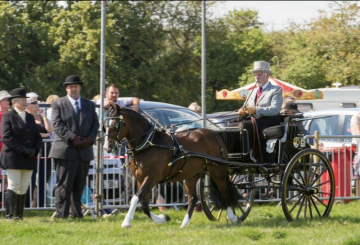 File 17 08 2019 17 43 18 360x245 - Preparations are well underway for the 2019 Wragby Show