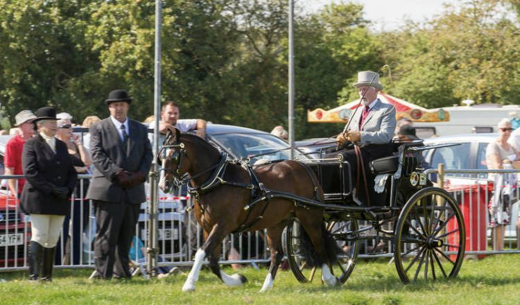 File 17 08 2019 17 43 18 750x440 - Preparations are well underway for the 2019 Wragby Show