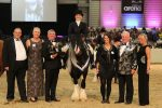 Frodo champion 2018 150x100 - Equifest introduces new Rescue Equine Showing Society for 2019