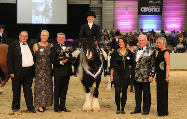 Frodo champion 2018 - Equifest introduces new Rescue Equine Showing Society for 2019