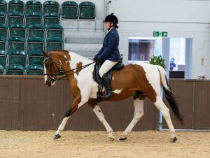 Anne Hollier 300x226 - The SEIB Search for a Star Riding for the Disabled Championship