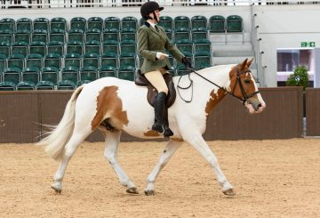 Eleanor Currington 360x245 - The SEIB Search for a Star Riding for the Disabled Championship