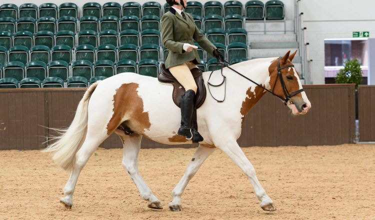 Eleanor Currington 750x440 - The SEIB Search for a Star Riding for the Disabled Championship