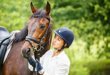 petcoveruk 360x245 - Is your horse or pony insured?