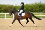 Katie Branley on Bunny 150x100 - The Road to the British Dressage Home Internationals