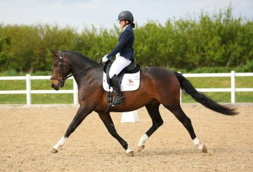 Katie Branley on Bunny 360x245 - The Road to the British Dressage Home Internationals