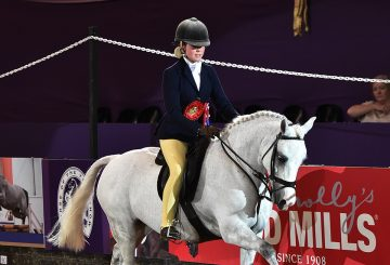 National Pony SocietySnuggy Hoods Working Hunter Pony of the Year Chloe Lemie 1st Class 360x245 - Coco Bongo is the National Pony Society/Snuggy Hoods Working Hunter Pony of the Year