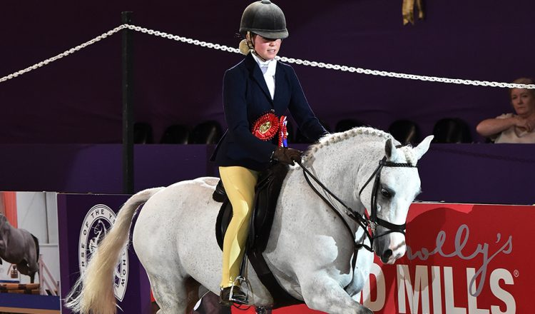 National Pony SocietySnuggy Hoods Working Hunter Pony of the Year Chloe Lemie 1st Class 750x440 - Coco Bongo is the National Pony Society/Snuggy Hoods Working Hunter Pony of the Year