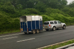 m5 horse 150x100 - 'No-deal' Brexit Green Card update for horsebox and trailer owners