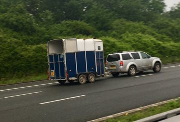 m5 horse 360x245 - 'No-deal' Brexit Green Card update for horsebox and trailer owners