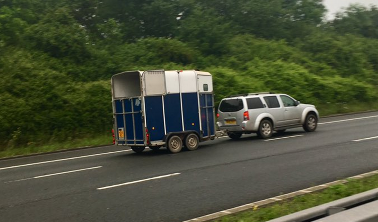 m5 horse 750x440 - 'No-deal' Brexit Green Card update for horsebox and trailer owners