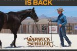 Warwick Schiller 150x100 - 'Training with Warwick Schiller' Back for a New Series on Horse & Country