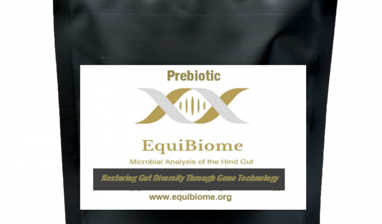 EquiBiome Prebiotic mock up 750x440 - Revolutionary New Prebiotic Launched Following a Decade of Research