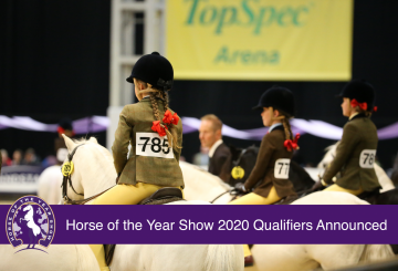 HOYS 2020 Qualifiers Announced Credit Julian Portch 360x245 - Horse of the Year Show 2020 Qualifiers Announced