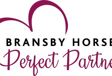 Bransby Horses Perfect Partner LOGO 360x245 - Equine charity launches revolutionary new rehoming process this Valentine's Day
