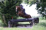 Copper Soundsf 150x100 - Foot Perfect for Ex-Racehorses with Mollichaff HoofKind Complete