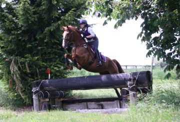 Copper Soundsf 360x245 - Foot Perfect for Ex-Racehorses with Mollichaff HoofKind Complete