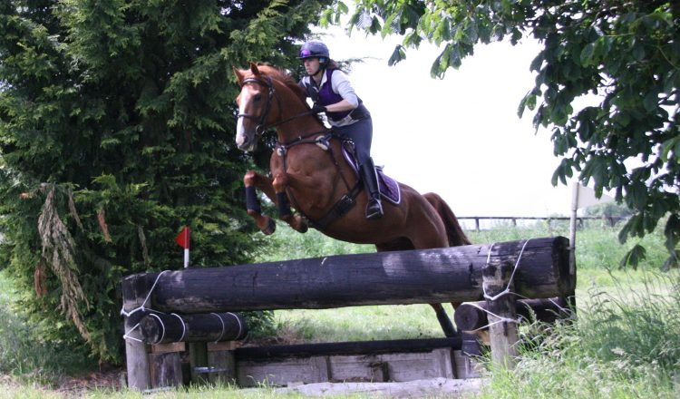 Copper Soundsf 750x440 - Foot Perfect for Ex-Racehorses with Mollichaff HoofKind Complete