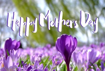 Happy Mothers Day 1 1 360x245 - Sustainable British products for Mother's Day