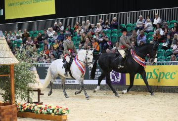 Linsfort and Rambo 360x245 - Dates announced for SEIB Search for a Star and Racehorse to Riding Horse 2020 qualifiers