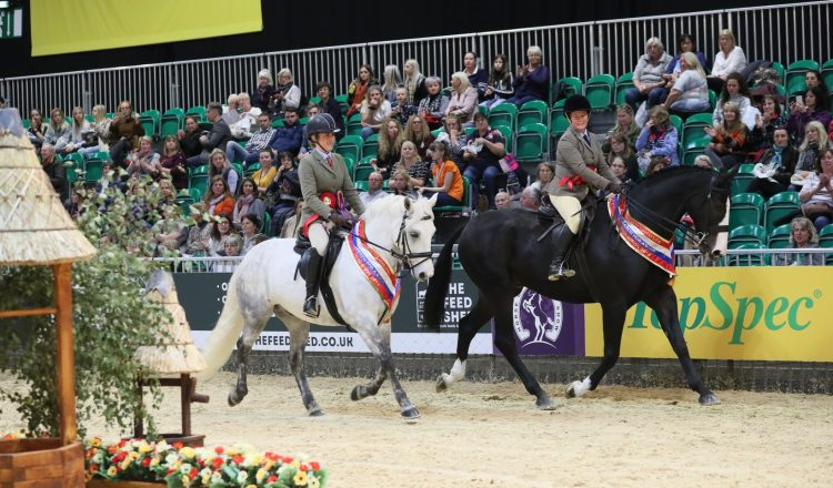 Linsfort and Rambo 750x440 - Dates announced for SEIB Search for a Star and Racehorse to Riding Horse 2020 qualifiers