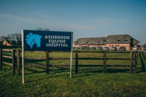 AshbrookAward 2 300x200 - CHESHIRE HORSE HOSPITAL RIDES AWAY WITH AWARD FOR BEST EQUINE VETS IN THE UK
