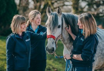 AshbrookAward 9 360x245 - CHESHIRE HORSE HOSPITAL RIDES AWAY WITH AWARD FOR BEST EQUINE VETS IN THE UK