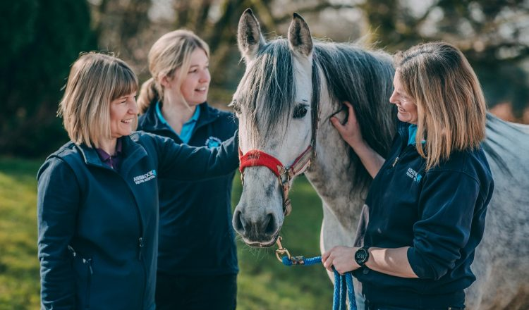 AshbrookAward 9 750x440 - CHESHIRE HORSE HOSPITAL RIDES AWAY WITH AWARD FOR BEST EQUINE VETS IN THE UK