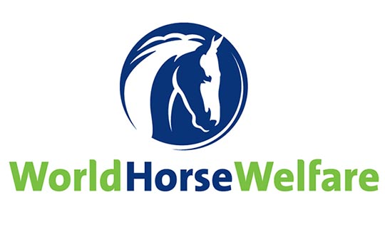 WorldhorseWelfarelogo - Man banned from keeping horses for ten years