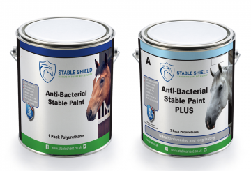 Stable paint