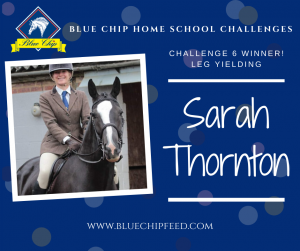 Blue Chip Home School PR image Sarah Thornton 300x251 - Home School Challenge winners chosen as Blue Chip collaborate with easibed for challenge 8