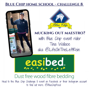 Blue Chip Home School PR image easibed 300x300 - Home School Challenge winners chosen as Blue Chip collaborate with easibed for challenge 8