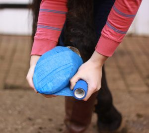 Hard ground during the summer months can cause bruising of the sole. 300x268 - Animalintex® and Summer Ailments advice from Robinson Animal Healthcare