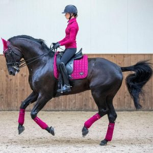 Loire Mulberry3 HR 2 1 1080x 300x300 - Win exclusive gear with Equestrian Giveaways