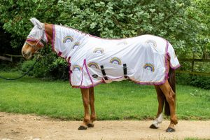 RainbowRug 1024x1024@2x 300x200 - Win exclusive gear with Equestrian Giveaways