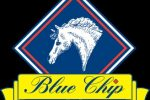 bluechip logo 150x100 - Home School Challenge winners chosen as Blue Chip collaborate with easibed for challenge 8
